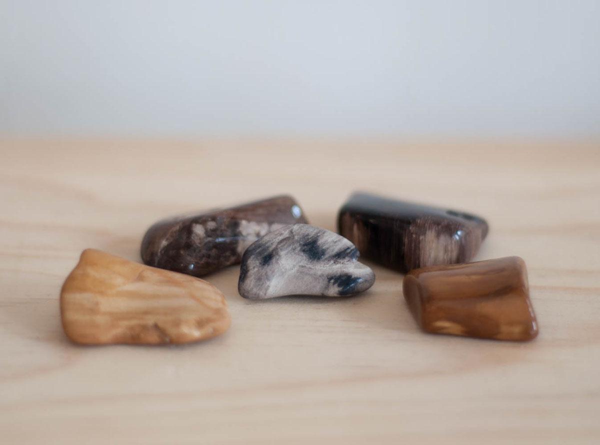 Tumbled Petrified Wood