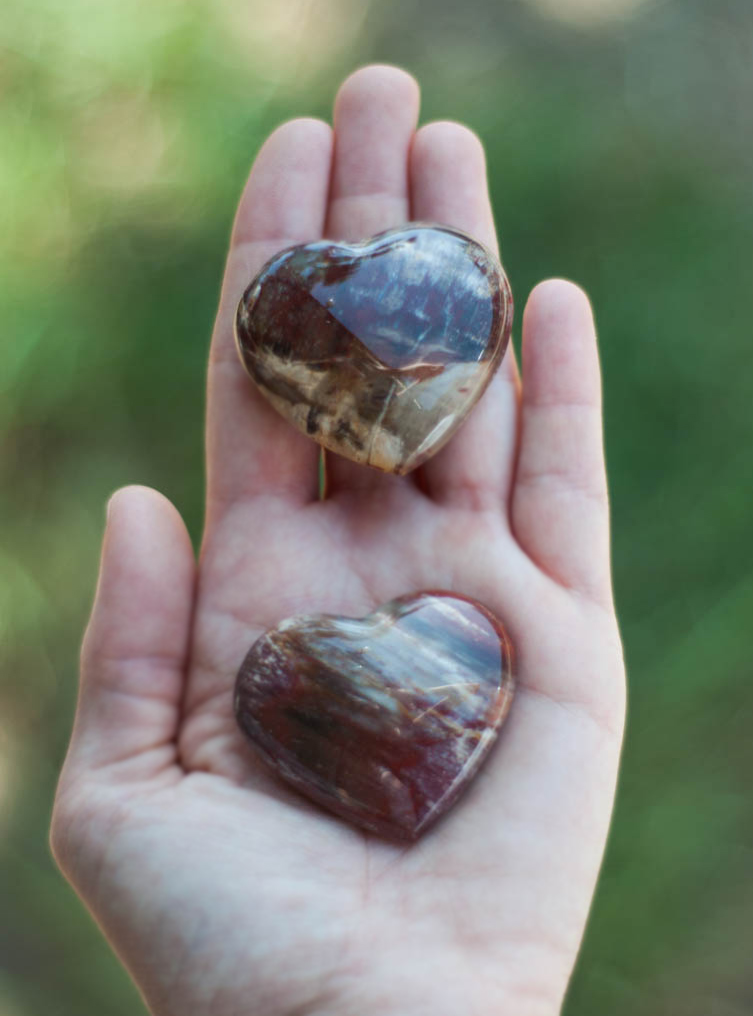 Petrified Wood Heart Crystal - medium