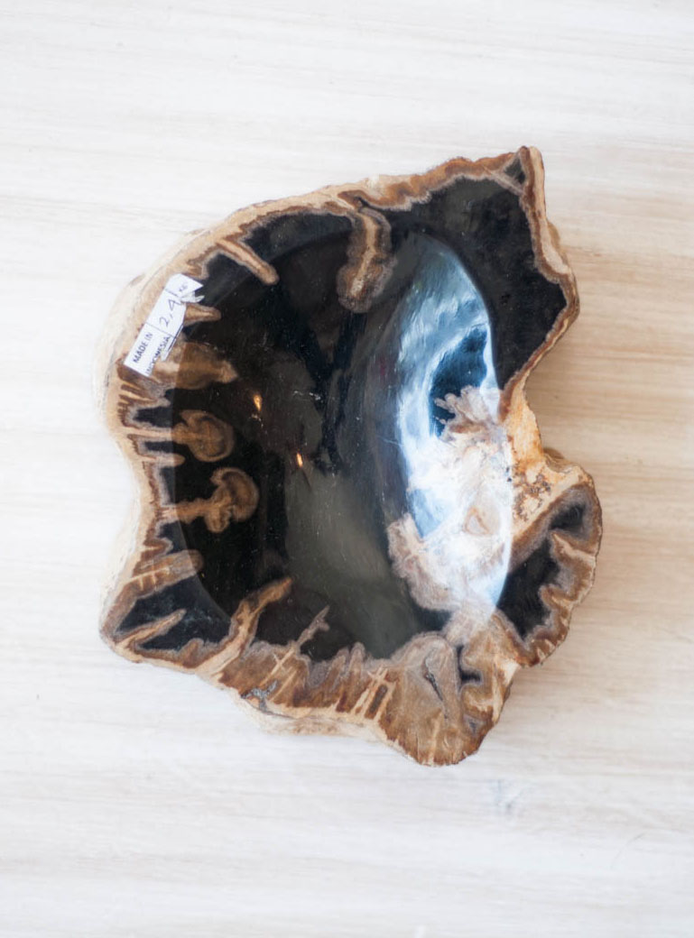 Petrified Wood Bowl - large